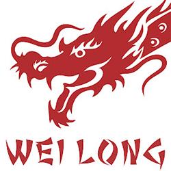 Работа в WEI LONG, Центр цигун-терапии
