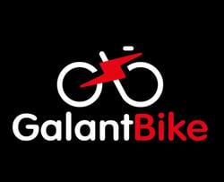 Работа в GalantBike