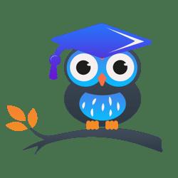 Работа в Blue Bird Academy