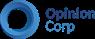 Работа в Opinion Corp